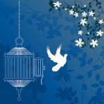 ۴۴ زندانی جرائم غیرعمد در کرمان، طعم آزادی را چشیدند
